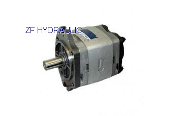 Gear Pump IPC3-10-100